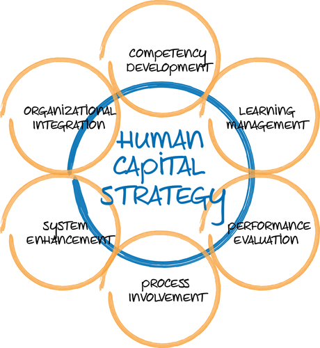 examples of human capital reporting