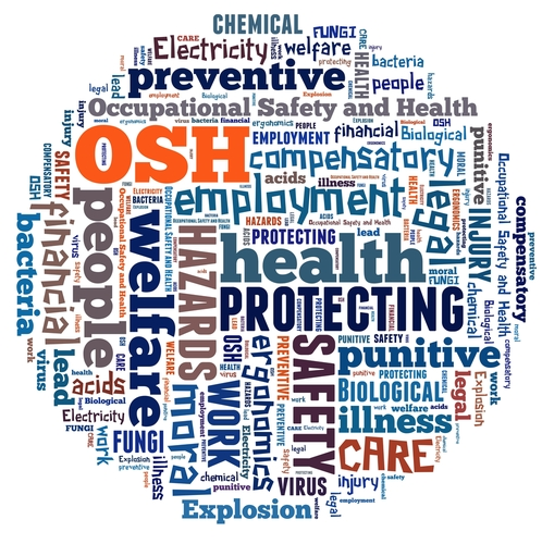 occupational safety and health in the Occupational safety and health professionals work to prevent accidents and  health hazards to workers, the community, and the environment they are.